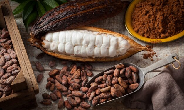 I Coloniali – Soft Commodities – Il cacao (cocoa)